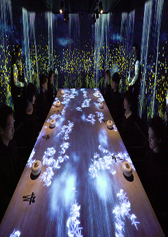 <strong>Teamlab creates interactive res</strong>
